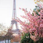 KHUYẾN MẠI VÉ TÀU CAO TỐC PARIS - BỈ CHO DU LỊCH PHÁP ĐẾN 14/3/2018